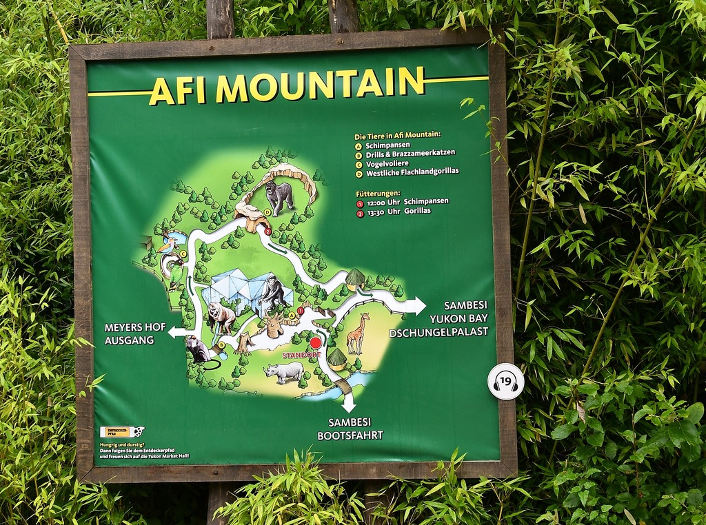 Image result for Afi Mountain Wildlife Sanctuary